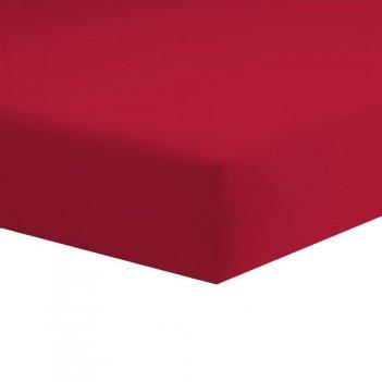 Lenzula 100X200 Jersey Con Angoli DAUNEX 1 Piazza 100% Cotone