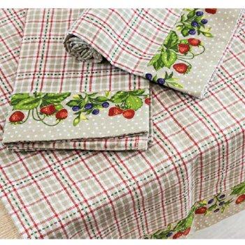 2 Strofinacci 45X65 Berries